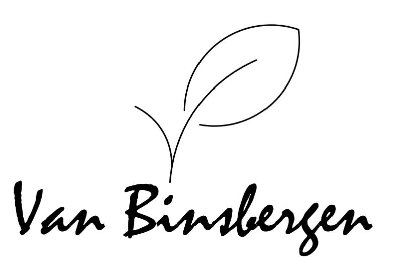 Van Binsbergen
